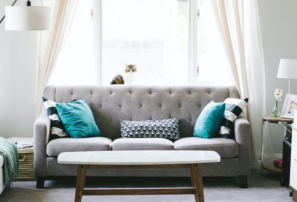 室内で安心できる空間づくりイメージ