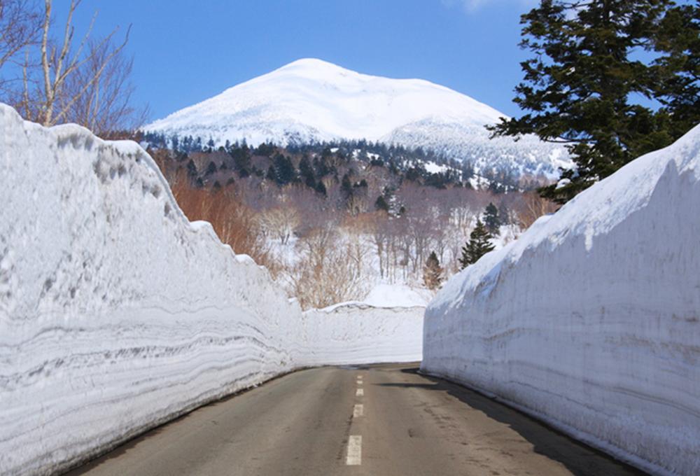 冬の八甲田では、道路の脇が雪の壁になる「雪の回廊」が有名ですが、その高さは約何メートルになるでしょう?